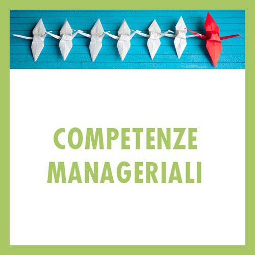 Leadership e Discontinuità  Accountability e capacità manageriali  Decisioni e narrazioni  La gestione delle persone  People care  Gestione per obiettivi Change management