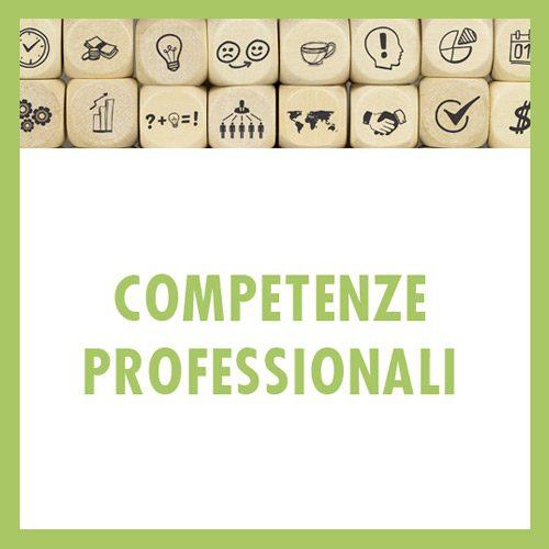 Competenze-professionali-ok