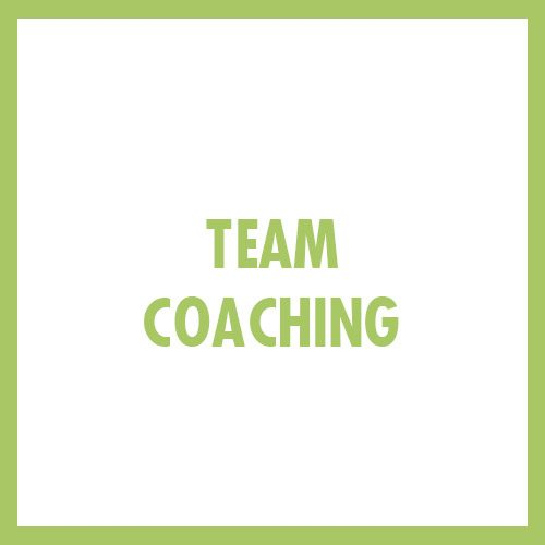 TEAM-COACHING